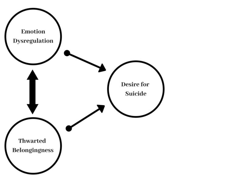 EmotionDysregulation